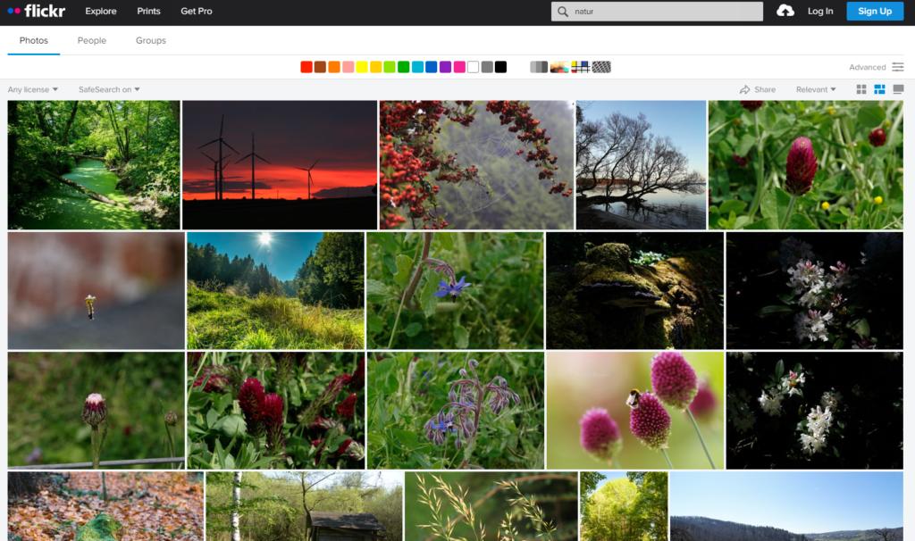 Skjermdump fra bildebase Flickr
